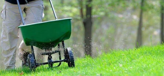 fall-lawn-fertilization-1