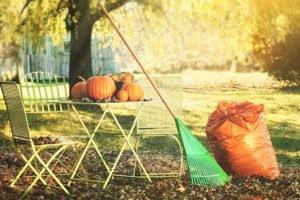 Fall yard maintenance